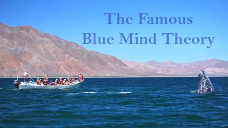 "The Famous ""Blue Mind Theory"""