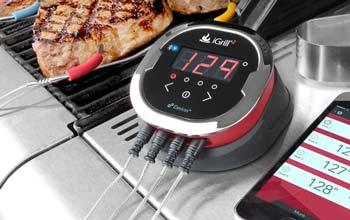 iGrill Barbecue Thermometer