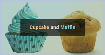 Differences between a Muffin and Cupcake