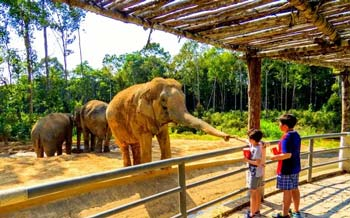 Visit the Famous Interesting Parks and Zoos