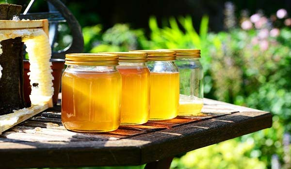 Honey Jar Buying Guide